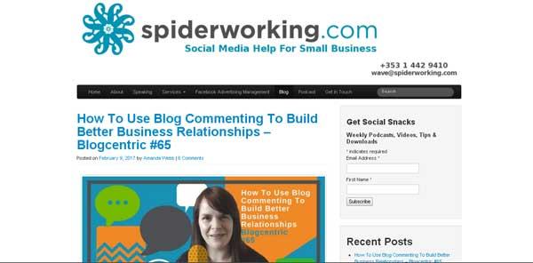 spiderworking